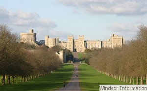 The Long Walk looking towards Windsor Castle